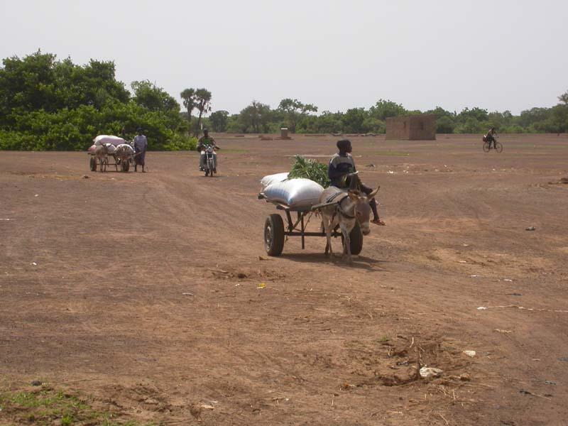 Burkina Faso Agriculture
